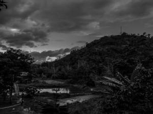Shaman' shelter in the Amazon jungle